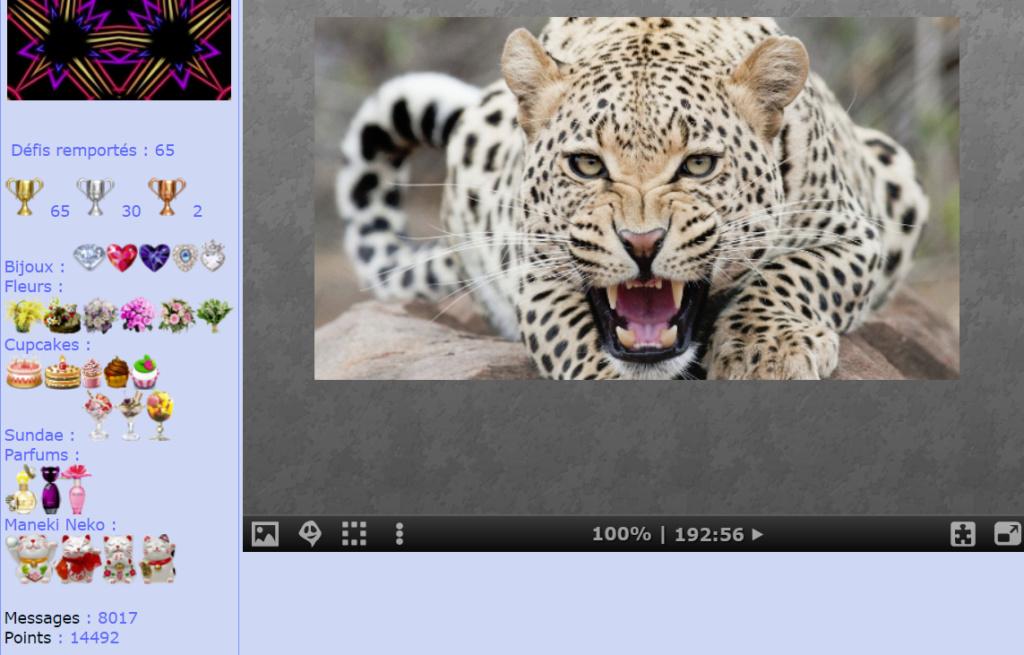 Puzzle #0508 / Leopard Mon_am47