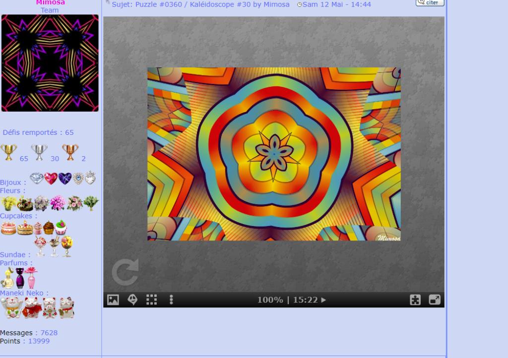 Puzzle #0360 / Kaléidoscope #30 by Mimosa Mon_am89