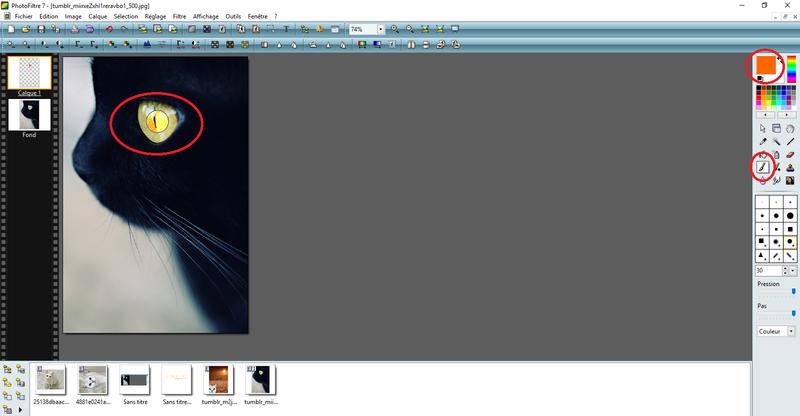 [graphisme] Photofiltre - tutos 410