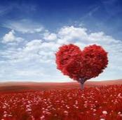 Les Griffes du Coeur Emmanuelle et ses minous  76 - Page 3 Amour10