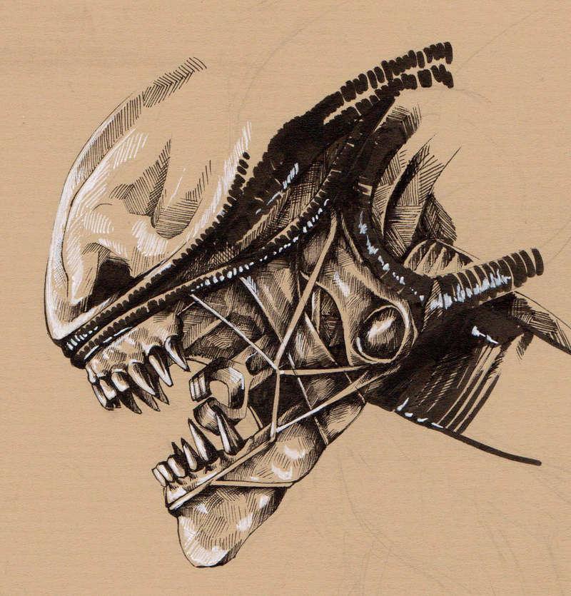 erode - croquis et WIP Alien10