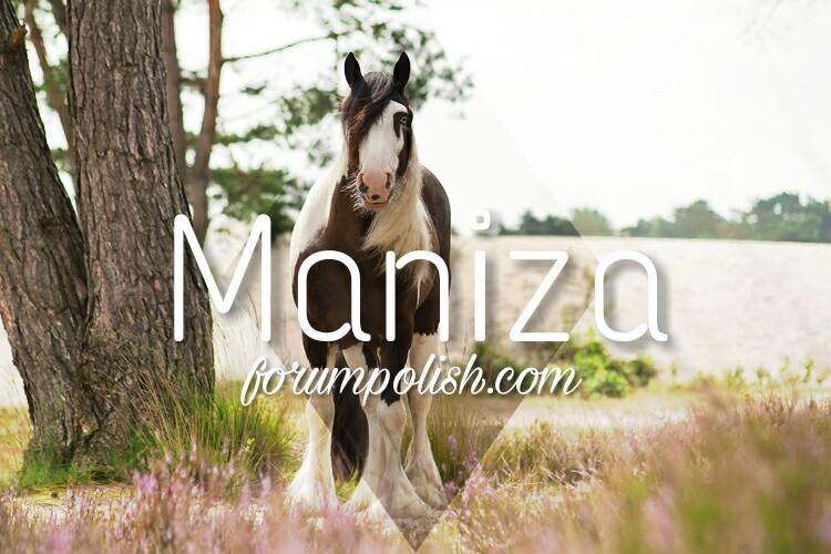 Free forum: Maniza