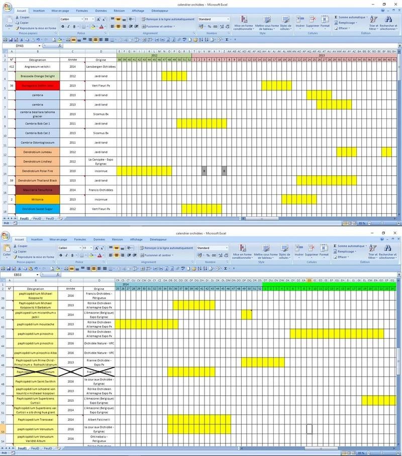 logicielle de gestion de colection Cal_or10