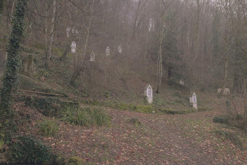 Jura,Château-Chalon 26122013