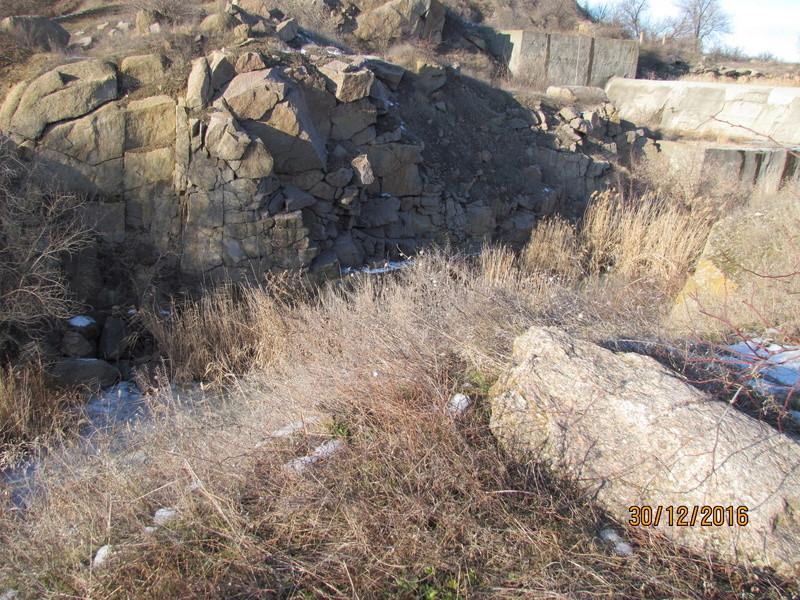 Cactus under carbonate 12 Img_7111
