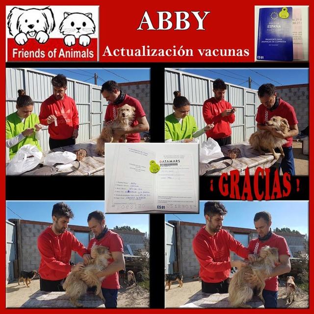 AU - Abby 15202611