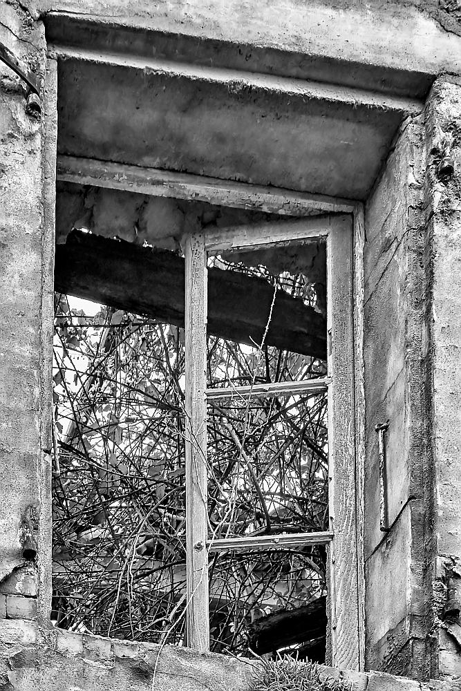 La cité blanche - Le Teil (07) - 02/02. Série.  Az3j2210