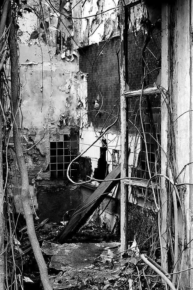 La cité blanche - Le Teil (07) - 02/02. Série.  Az3j2310