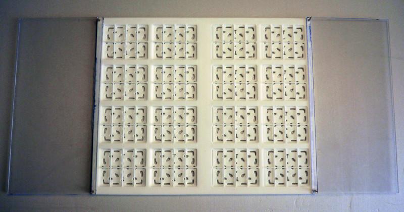Diorama PALAIS DE JABBA Step210
