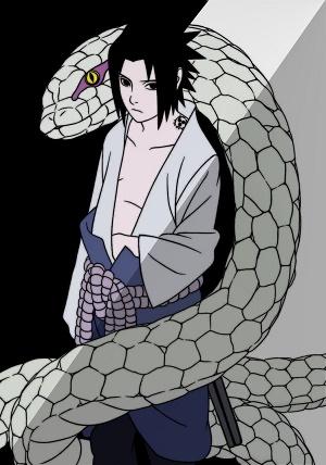 CASA DO TAKIKAGE Sasuke10