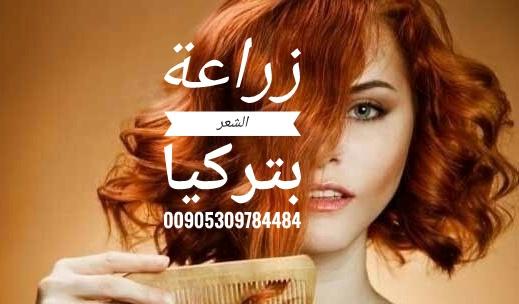 Hair Transplant 15178010