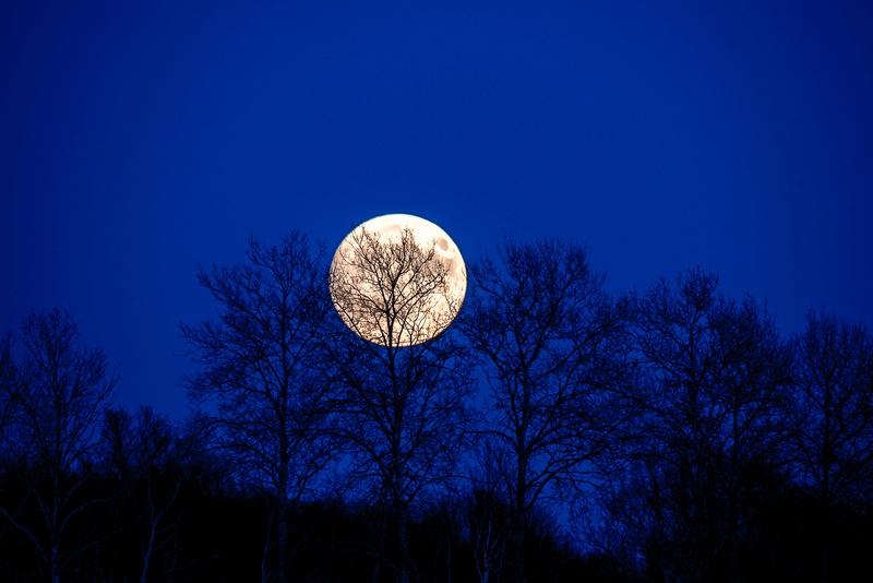 Le levé de la super lune dimanche le 13... Super_10