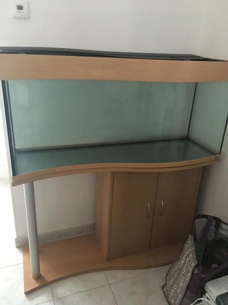 Aquarium de ilouange Img_0112