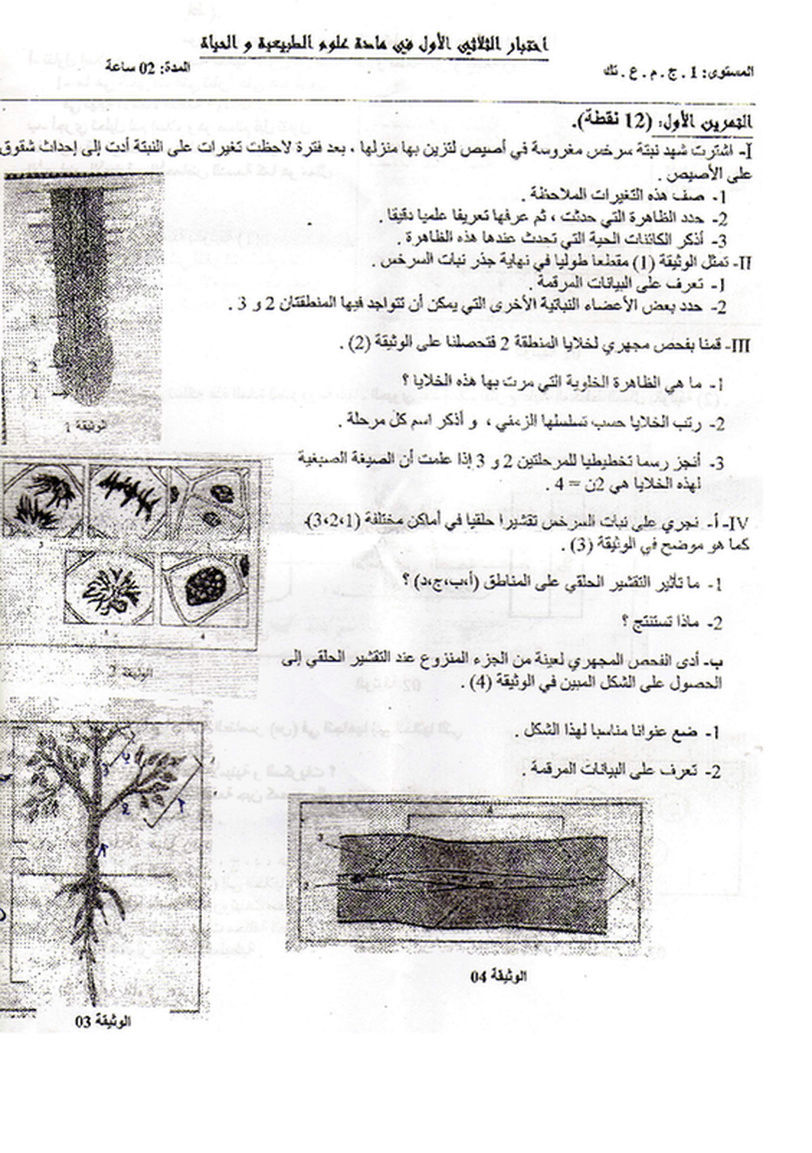 إختبار الفصل الاول في علوم الطبيعة و الحياة - السنة الاولى ثانوي علوم و تكنولوجيا (نموذج 2) 39613210