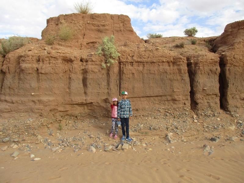 les gastéropodes du quaternaire de l'oued Metlili Laghouat. Echell10