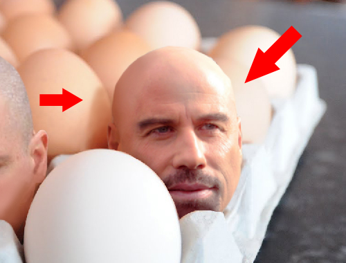 How to create big heads in an egg tray 810