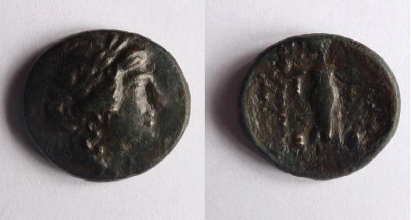 Une monnaie grecque Grycqu10