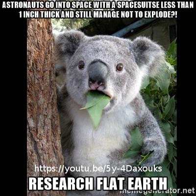 Flat Earth Memes Koala-10