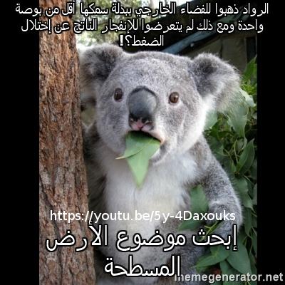 Flat Earth Memes Koala-11