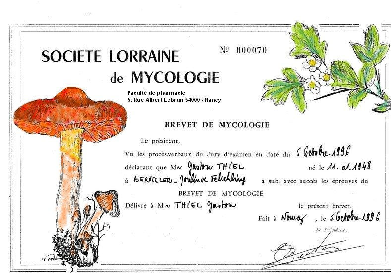 Brevet de mycologie Brevet10