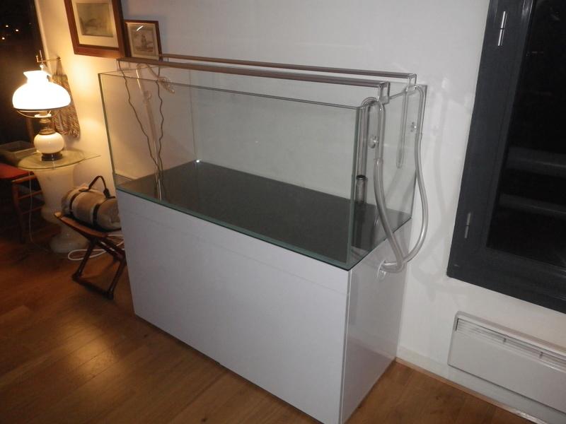 Mon nouveau projet : aquarium de 300 l.  Imgp0060
