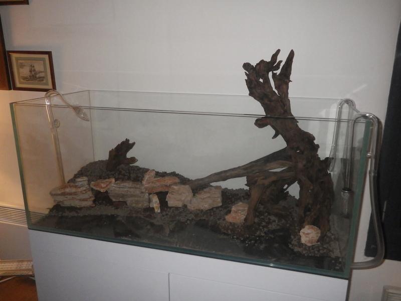 Mon nouveau projet : aquarium de 300 l.  Imgp0067