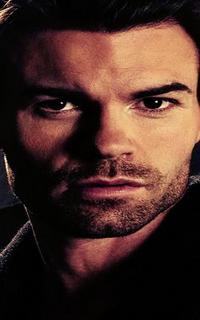 Daniel Gillies (Elijah Mikaelson) - Avatar 200*320 1013