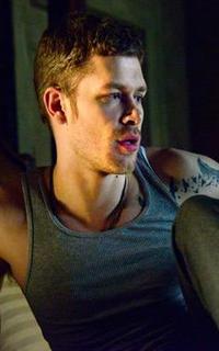 Joseph Morgan (Niklaus Mikaelson) - Avatar 200-320 317