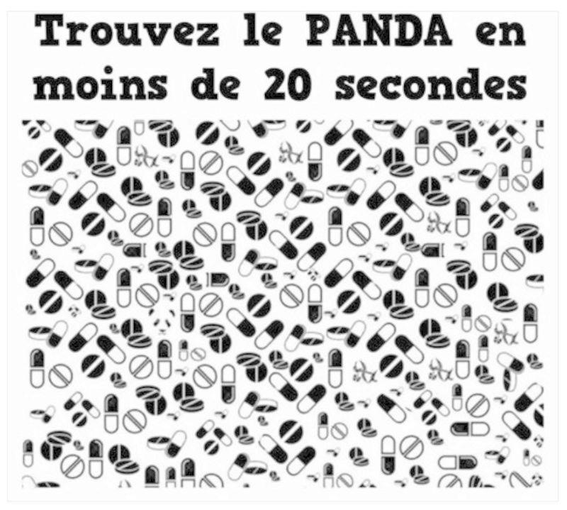 JEU : Cherchez et trouvez ! - Page 38 Panda10