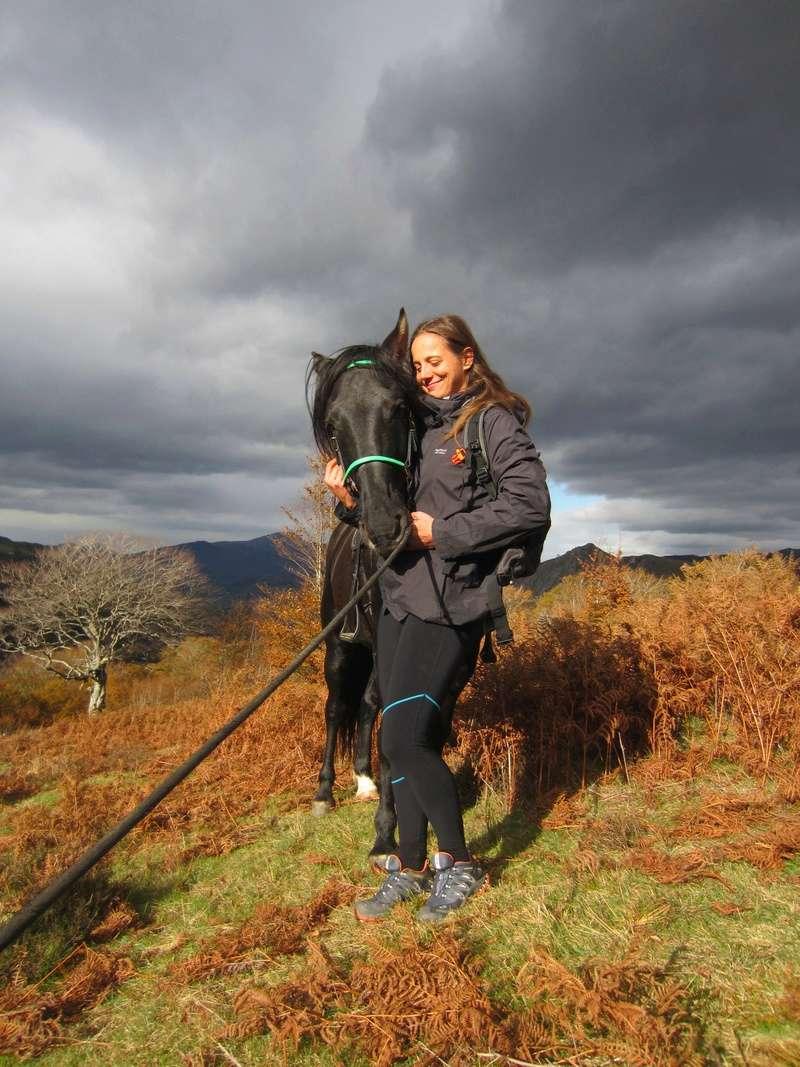 CONCOURS PHOTOS : le cheval et l'automne Img_2810