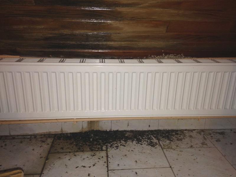 Gros dégâts sur rampant en lambris chambre à coucher 20161115