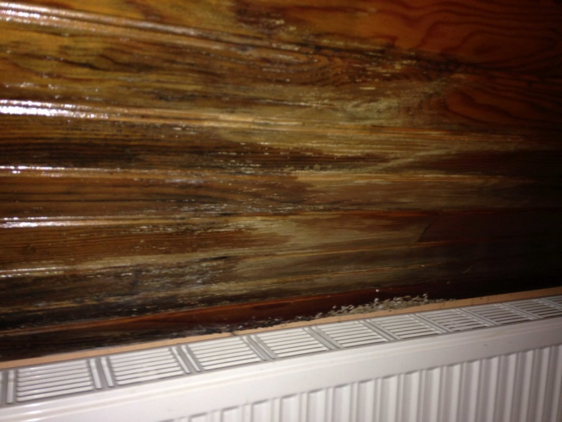 Gros dégâts sur rampant en lambris chambre à coucher 20161116