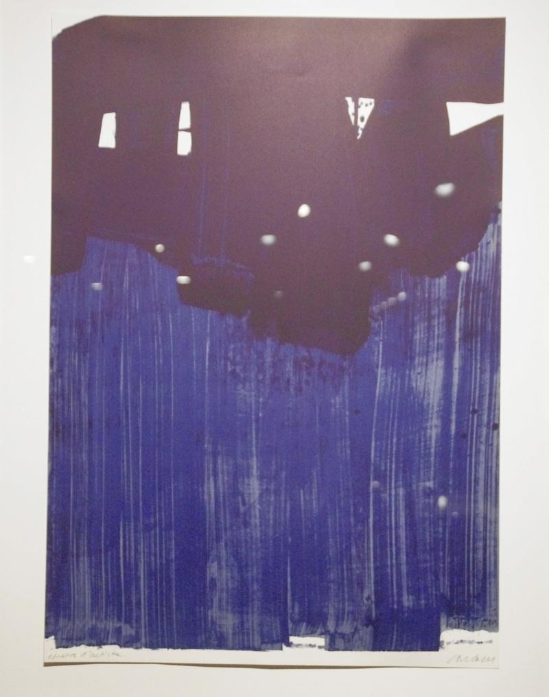 Un peintre, un auteur 3 : Pierre Soulages - Page 3 _igp0910
