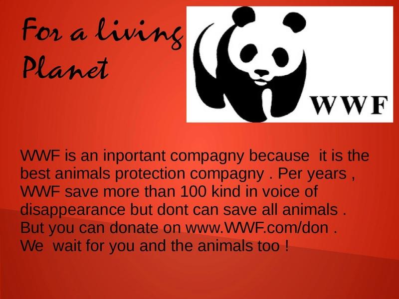 presentation of WWF Truc_d10