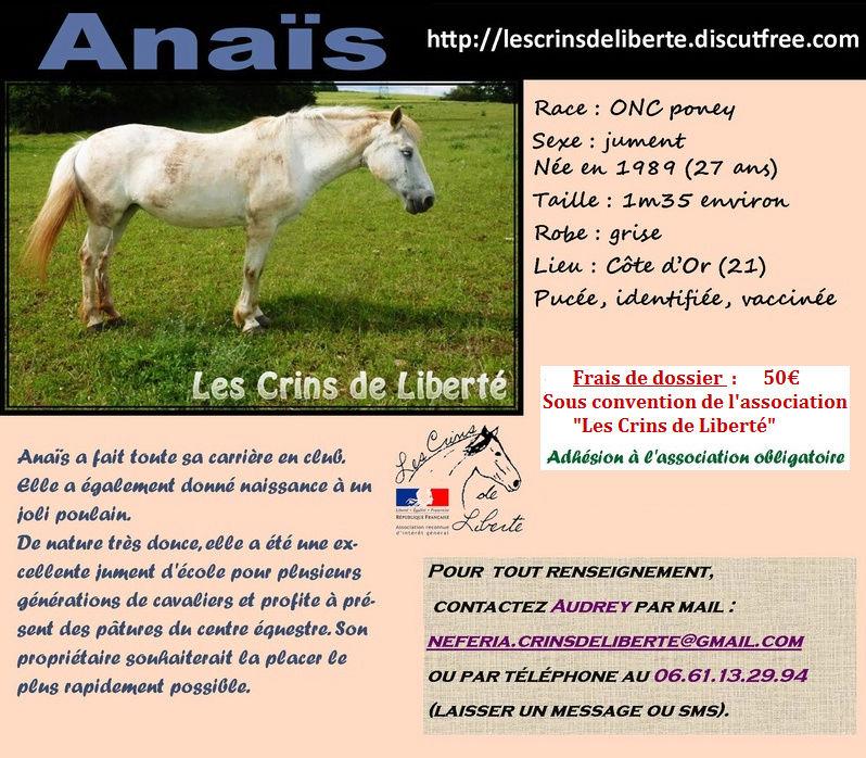 DPT 21 - 27 ans - Anaïs, ONC Poney- adoptée par Manon et sa famille - Page 2 Anays11