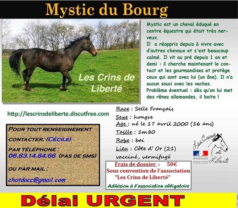 Dp 21 - 16 ans - Mystik du Bourg, hongre SF, adopté par Barbara (2017) Mystic13