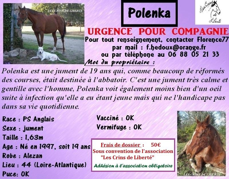 Dpt 44, 19 ans,  POLENKA PS Anglais, Partie ** - Page 2 Polenk12