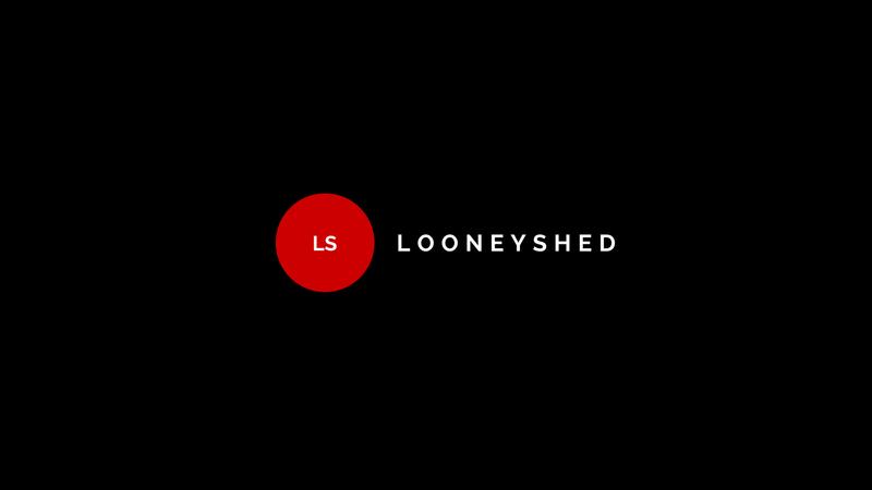 LooneyShed 11224610