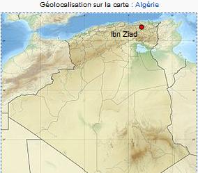 Helicidae algérien vivant Ibn_zi10