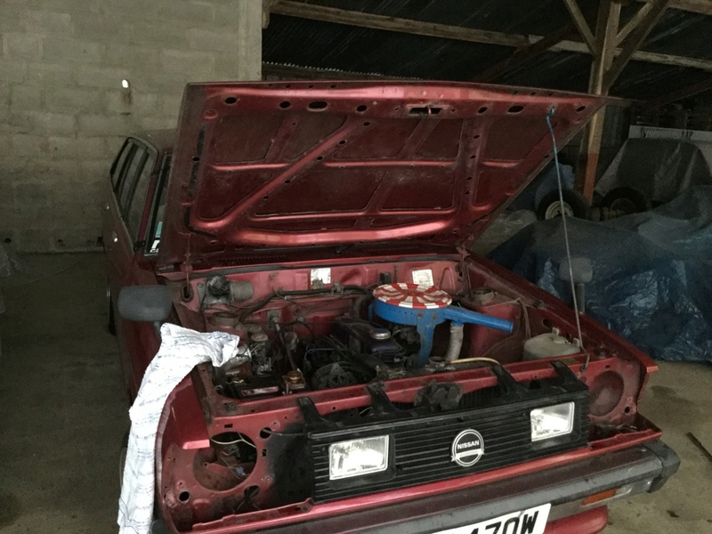 1981 Datsun Sunny Fastback 1.5L Img_0116