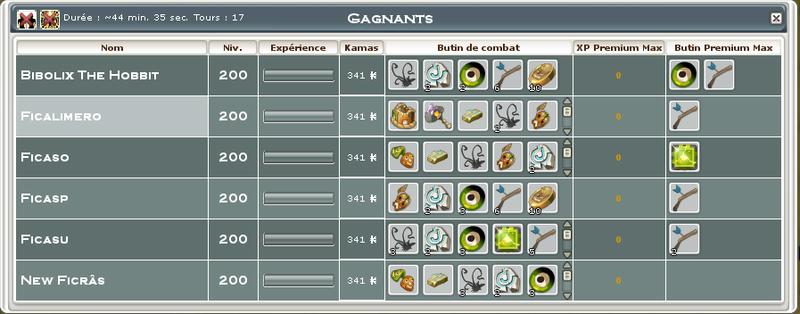 Screenshot des loot à partager entre guildeux Fica10