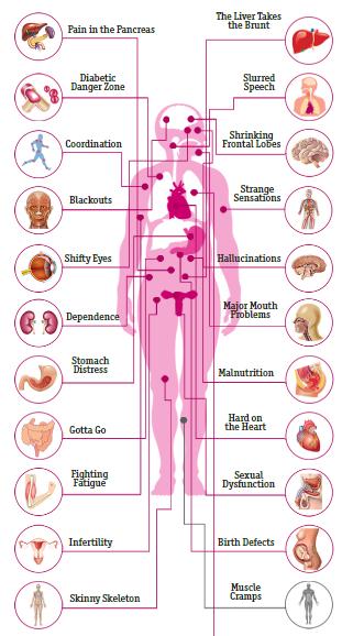 Efectos del Alcohol en el Cuerpo Humano Alcoho12