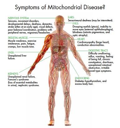 Enfermedades mitocondriales Mitoc10