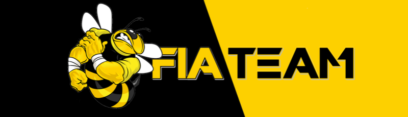 FIA TEAM RACING - Portal Fiatea17