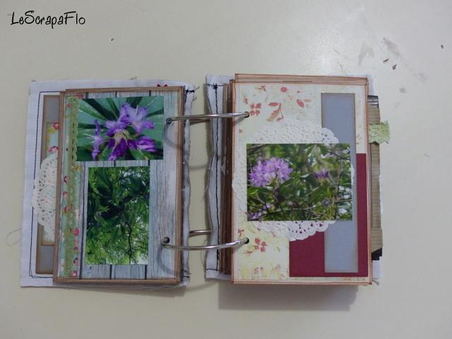 SB06 - album de Flo - Bois du Breuil P1040614