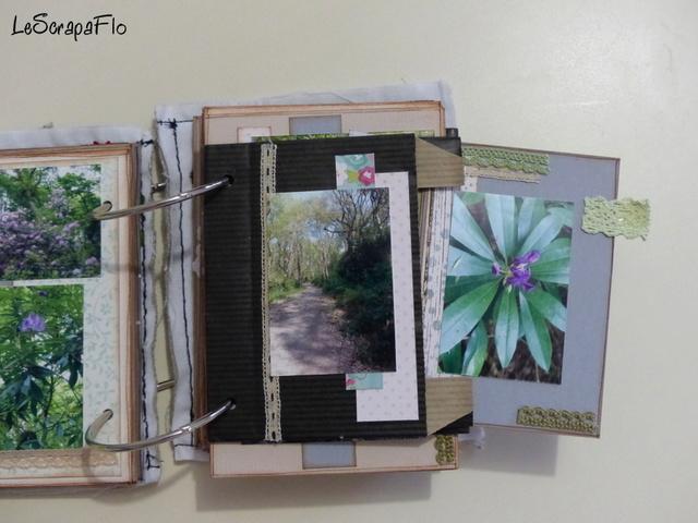 SB06 - album de Flo - Bois du Breuil P1040616
