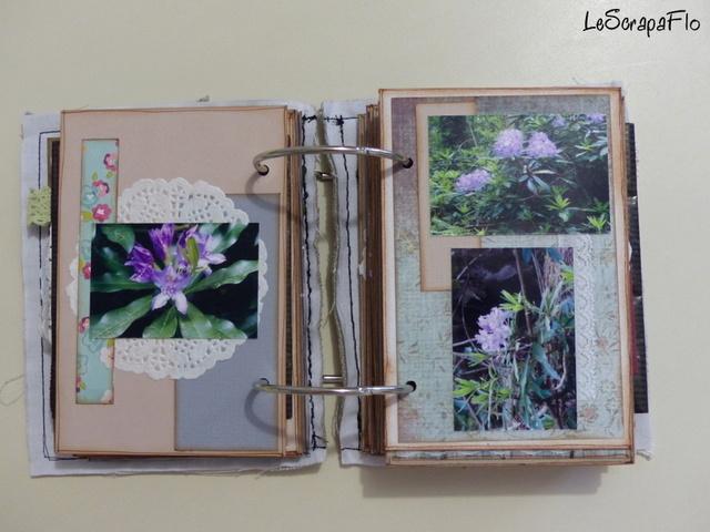 SB06 - album de Flo - Bois du Breuil P1040617