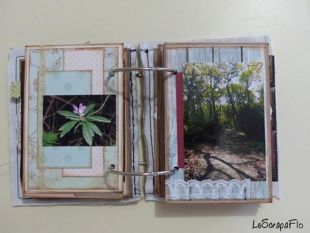 SB06 - album de Flo - Bois du Breuil P1040619