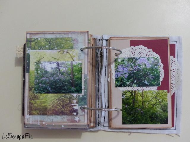 SB06 - album de Flo - Bois du Breuil P1040622