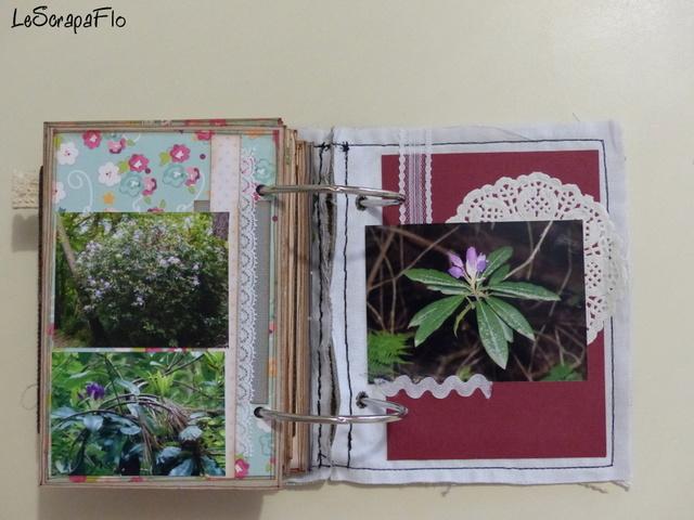 SB06 - album de Flo - Bois du Breuil P1040625